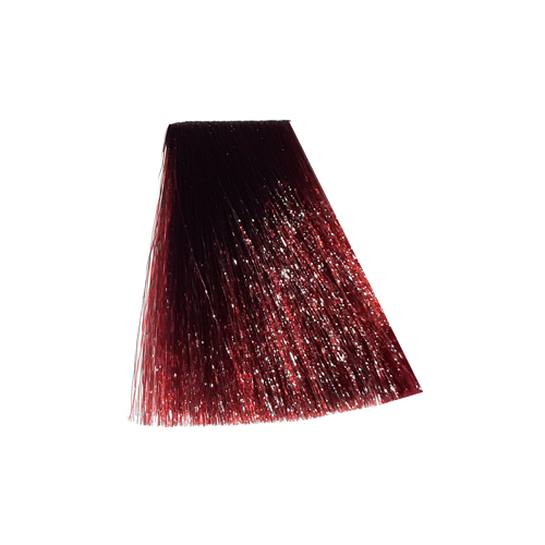 رنگ موی پادینا سری رنگ های جدید -پیچک جنگل(گوجه ای )5.562