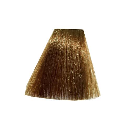 رنگ موی پادینا سری طبیعی قوی -بلوند تیره قوی 00-6