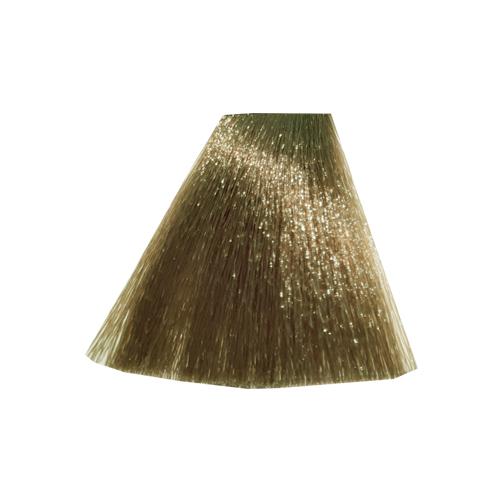 رنگ موی پادینا سری بژ-بلوند بژ روشن 8-8