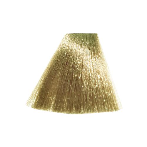 رنگ موی پادینا سری بژ- بلوند بژ خیلی روشن8-9