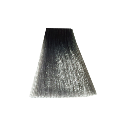 رنگ موی پادینا سری واریاسیون -واریاسیون دودی E 11-0-11