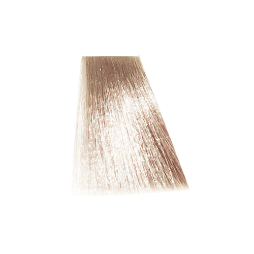 رنگ موی پادینا سری تنباکویی -پیازی T10